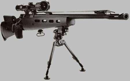 Зброя точного бою
